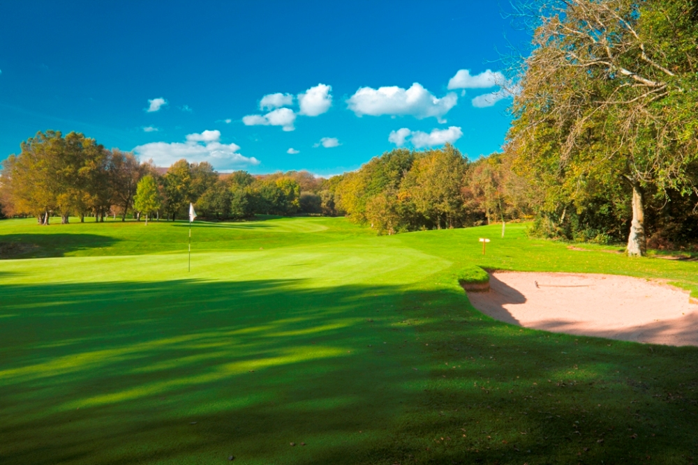 Large green on the Newport golf course