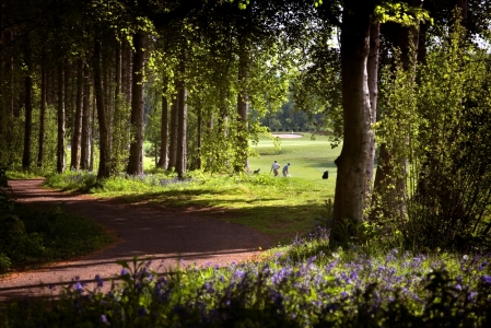 Woods and players on the Wales National course at the Vale resort