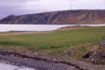 Green and sea at Elie golf course