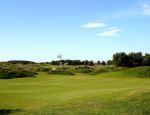 Green at Panmure golf course