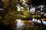 Green y lago sobre el campo de golf de Vale (lake)