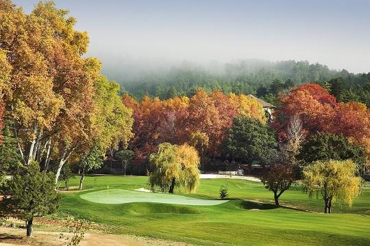 Green et arbre d'automne sur le golf de Vidago Palace proche de Porto au Portugal