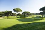 Large fairway et arbre sur le golf Oceanico 'Old' au Portugal