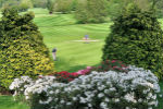 Vale of Llangollen Golf